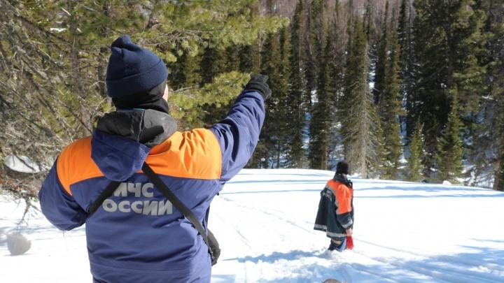 В МЧС рассказали, когда возобновят поиски пропавших в Приисковом снегоходчиков