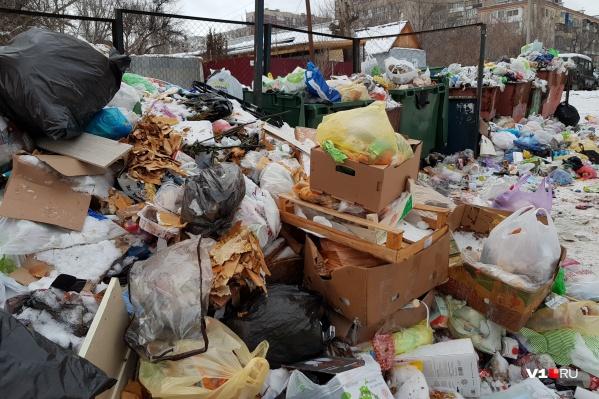 Волгоградцы поддержали «мусорный бунт» против регоператора