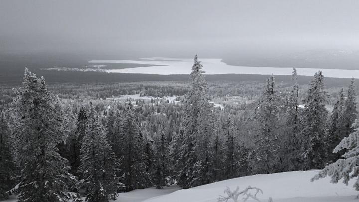 Житель Челябинской области насмерть замёрз по дороге с работы домой