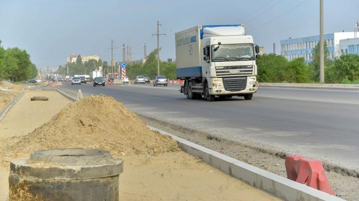 «Сначала не прижилась тысяча»: в Волгограде на сохнущем шоссе Авиаторов погибло двести деревьев