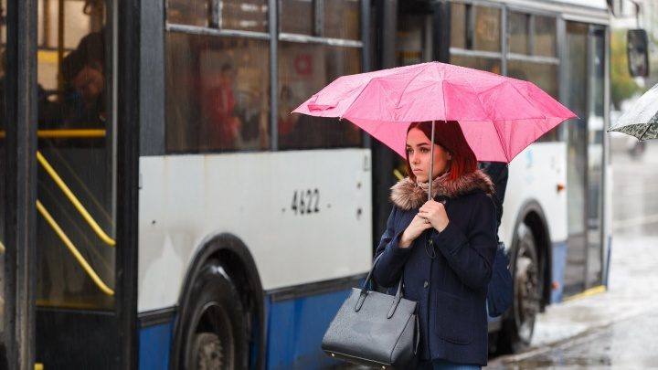 В Волгоградскую область придут грозы, дожди и сильный ветер