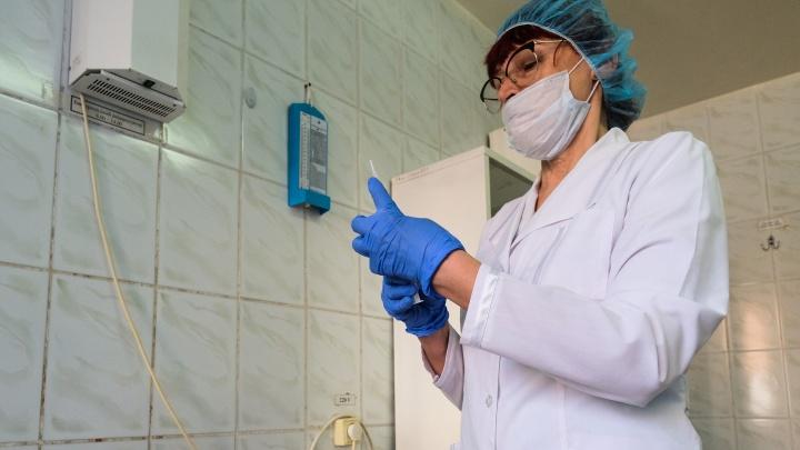 Совсем зачахли: в Новосибирске выросло число заболевших ОРВИ и гриппом