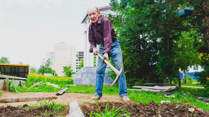 «Лишь бы здоровье было». В Перми пенсионер за свой счет построил сквер и высадил сотню деревьев
