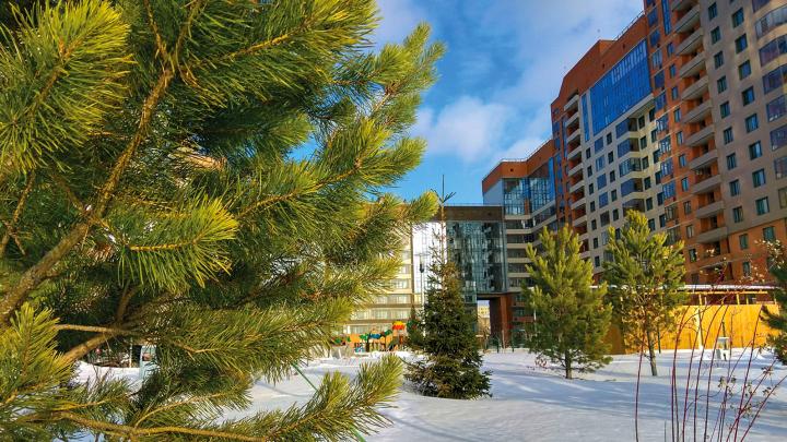 Только до 28 декабря можно купить новую квартиру и сэкономить 450 000 рублей