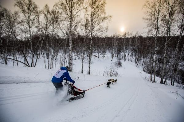 Лесную трассу биатлонного комплекса обнесли забором: чтобы здесь кататься, надо теперь платить 800 рублей в месяц