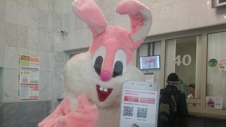 На вокзале Екатеринбурга розовый заяц с большим айфоном учил пассажиров покупать билеты через интернет