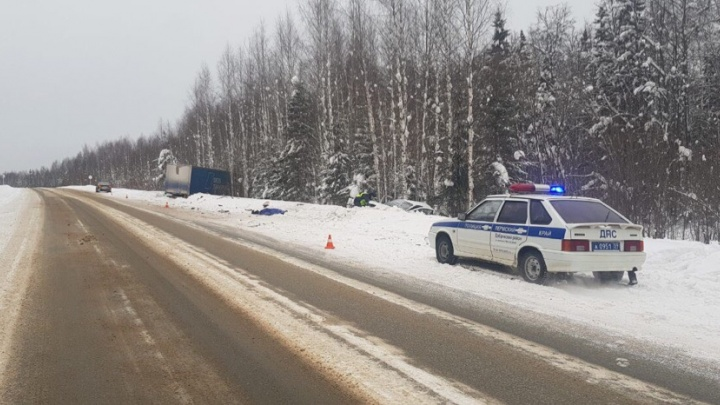 На трассе в Добрянском районе Lada врезалась в грузовик: погибли женщина и ребенок