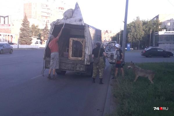 Волк выпал из машины на улице Молодогвардейцев — прямо в жилом районе