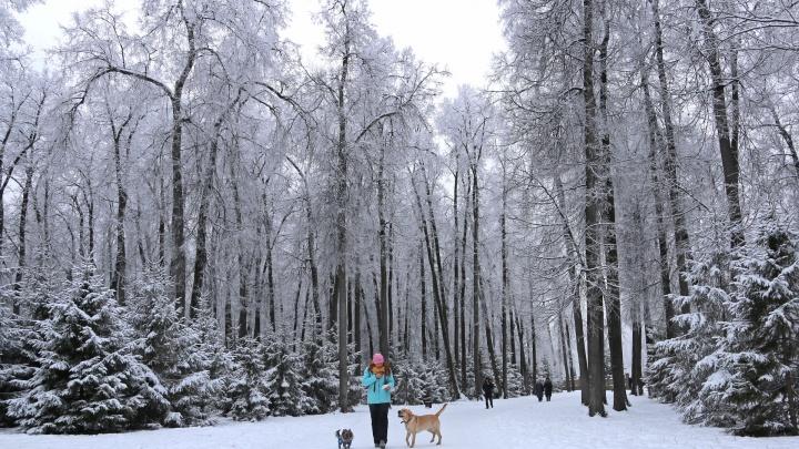 Пришел мороз, когда не ждали: в Башкирии на выходных похолодает до-27 °C