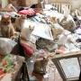 Ораве кошек, оставшихся в комнате после смерти хозяйки, потребовалась помощь