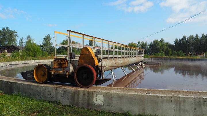 Требования жёстче — вода чище: пермский ЦБК продолжает улучшать экологию региона