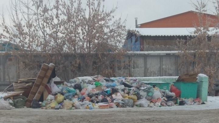 Мусорные кучи, которые больше недели лежат на улице Бабарынка, должны скоро убрать