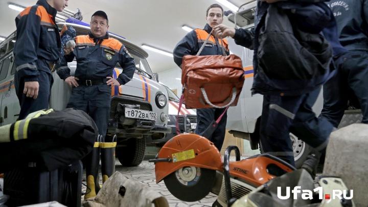 В Уфе спасатели вытащили из «железного» плена собаку