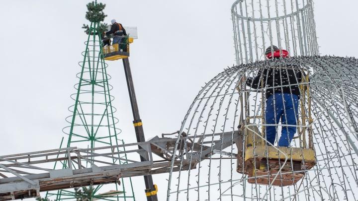Главную ёлку Волгограда впервые установят в пойме: рассказываем, как украсят город к Новому году