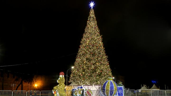 Одна другой краше: смотрим на главные новогодние ёлки нагорной части Нижнего Новгорода