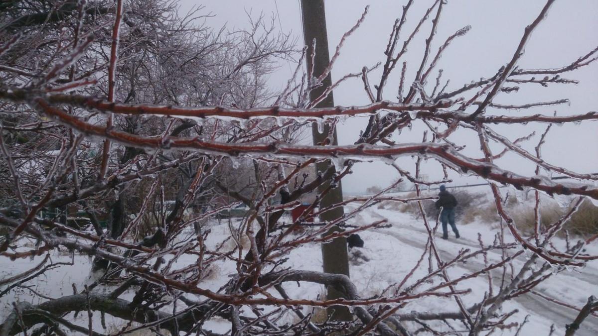 Ледяной дождь первый раз они увидели на Кубани