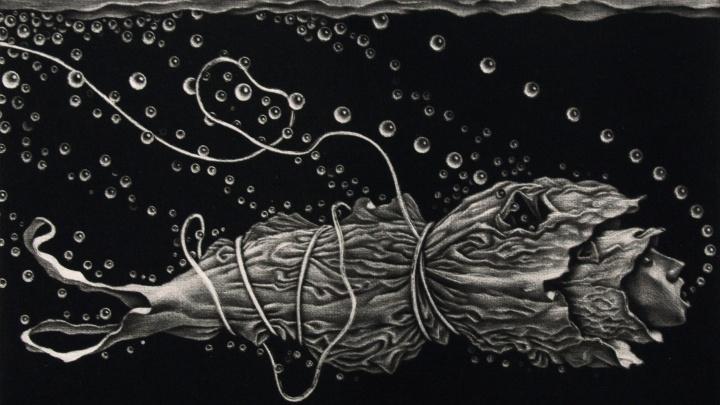 В Екатеринбурге откроется выставка гравюр о защите моря и смерти черепах от пластика: смотрим работы