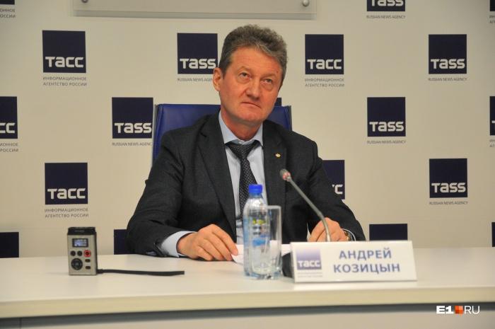 Андрей Козицын рассказал губернатору про снос башни