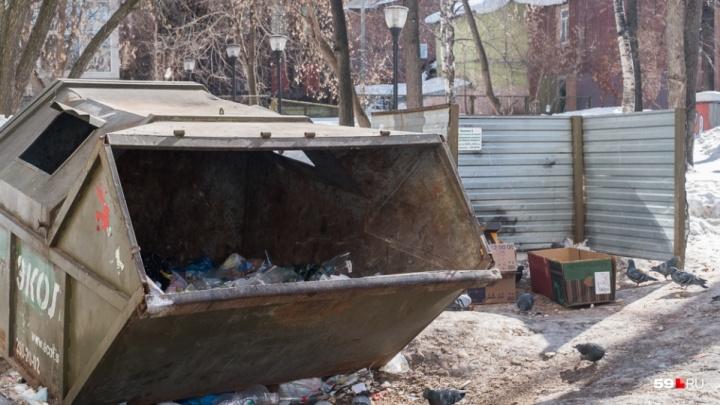 В Прикамье утверждены тарифы на вывоз мусора. Рассказываем, сколько будем платить в следующем году