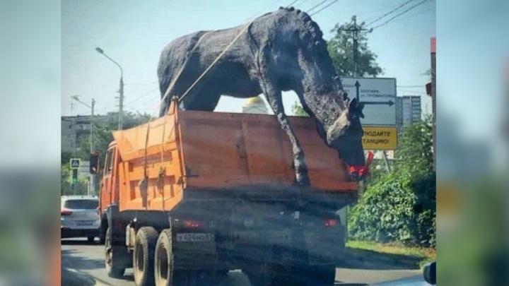 Ход конем: ростовские СМИ поспешили сообщить о возвращении фигур лошадей на прежнее место