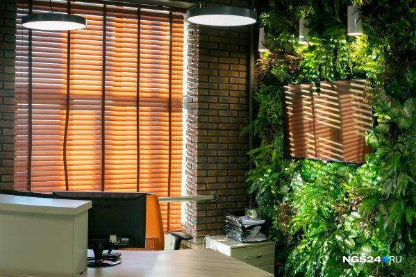 В офисе пресс-службы ГХК много декоративной зелени