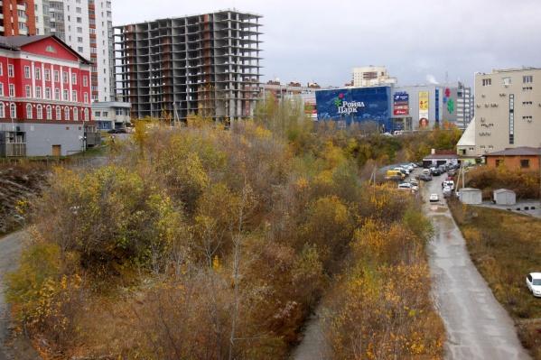 Вид на пойму Ельцовки-1 с пешеходного моста. Хотели бы, чтобы в этом месте появился большой городской парк?