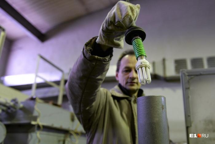 Энергосберегающие лампочки отправят на переработку