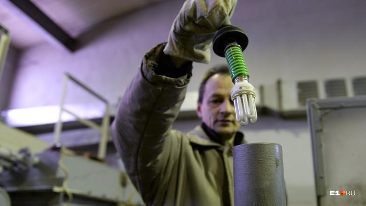 Несите свои батарейки и лампочки: где в июне в Екатеринбурге можно сдать опасные отходы