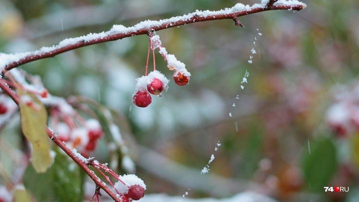 Мокрый снег и сильный ветер: синоптики предупредили об ухудшении погоды в Челябинской области