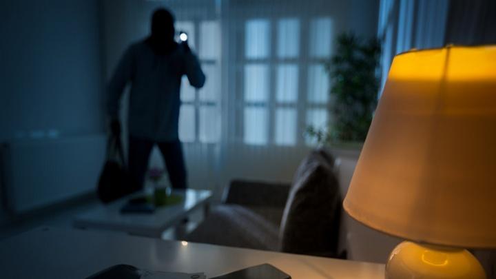«А ты не воруй»: владельцы домов и дач будут следить за сохранностью имущества с мобильных телефонов
