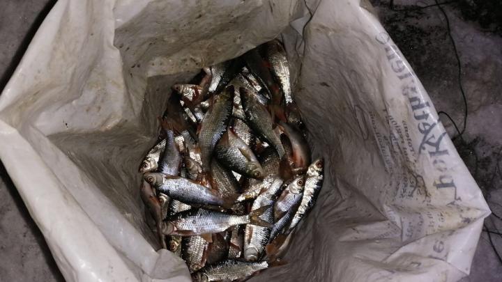 Раскинул сети, а попал под статью: в Самарской области мужчину задержали за незаконную рыбалку