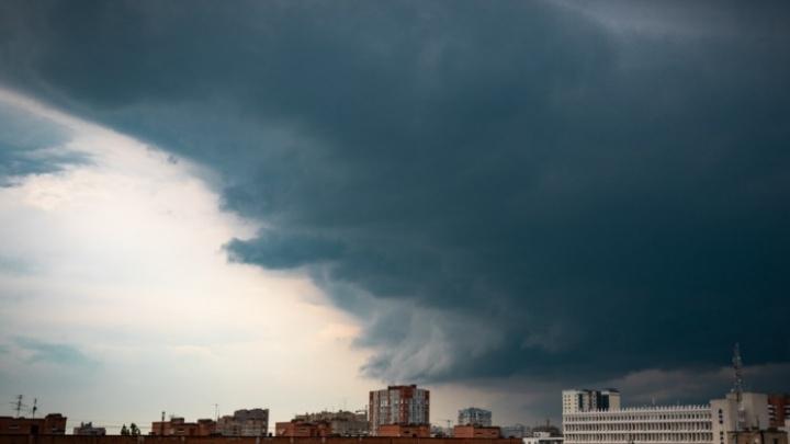 В Ростове-на-Дону объявили штормовое предупреждение из-за ветра