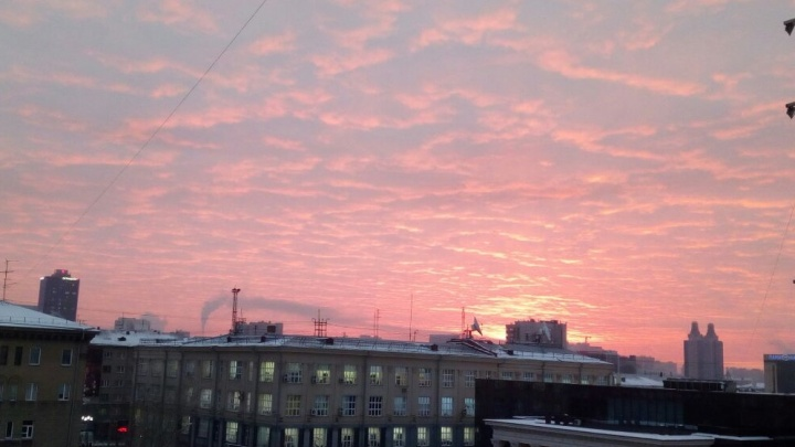 Морозный рассвет: небо над Новосибирском стало розовым