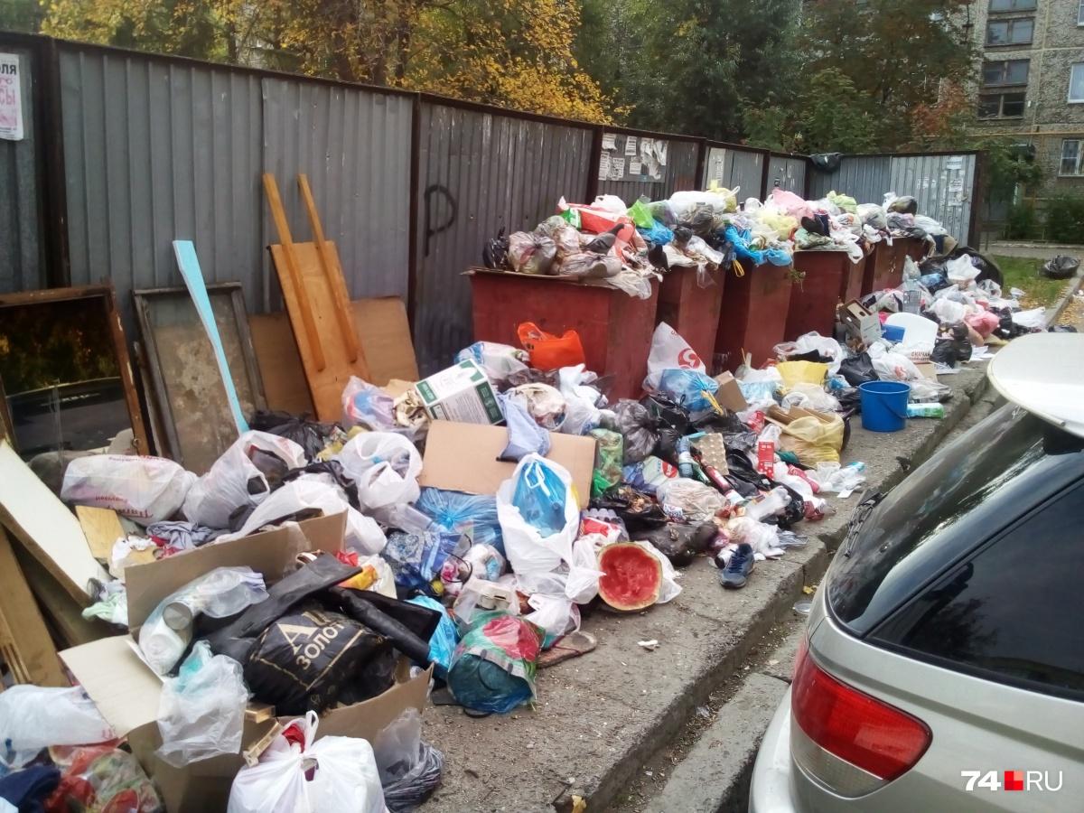 Челябинск находится в мусорном аду уже 10 дней