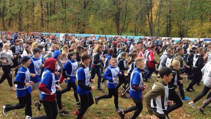 Сотни спортсменов в осеннем лесу: смотрим, как самарцы пробежали«Кросс нации»