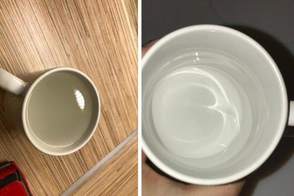 Для сравнения: слева — вода из крана, справа — из магазина