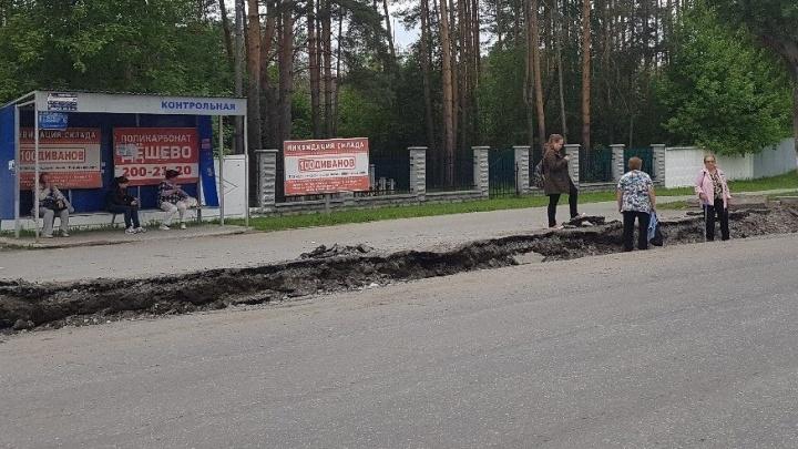 Дорожникам, которые загнали пассажиров в окопы на Репина, грозит штраф в 300 тысяч рублей