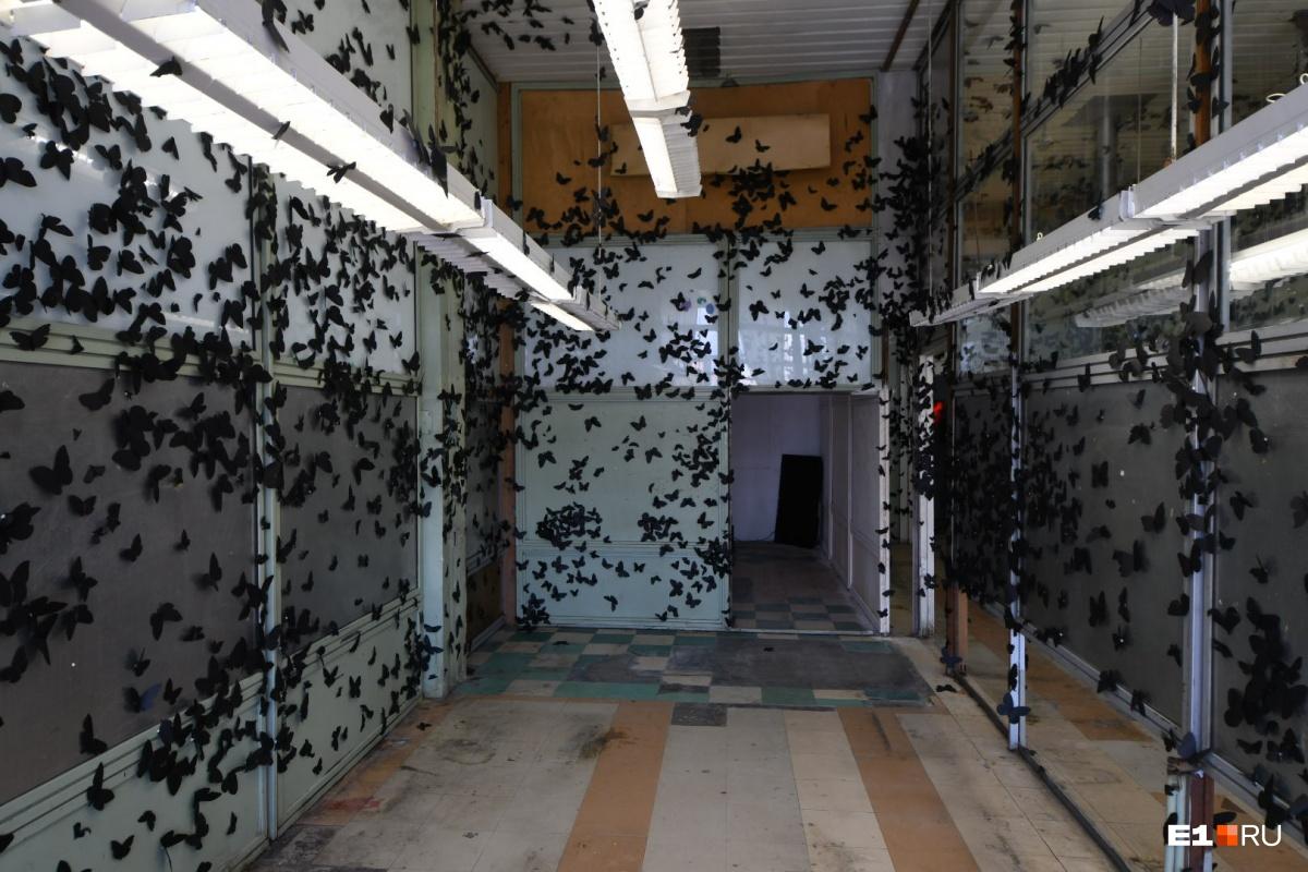 Мертвые бабочки, расчлененка и грибочки. Скоро во всех инстаграмах Екатеринбурга