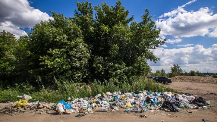 Берег Оби у Заельцовского парка завалили мусором