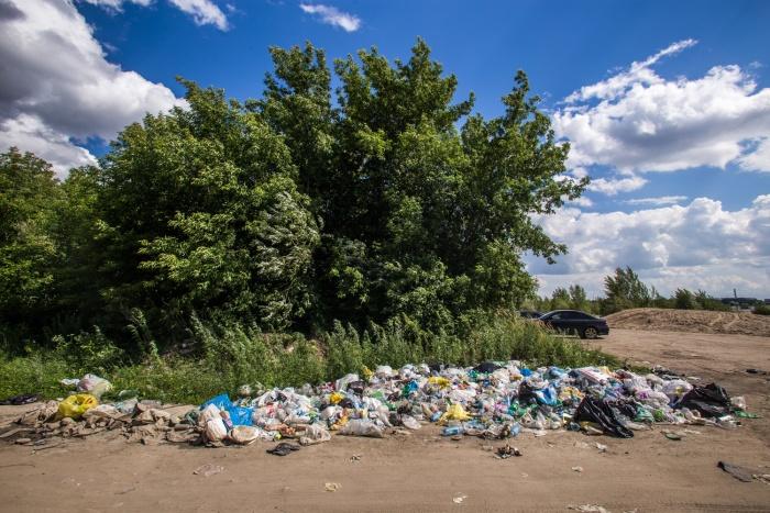 Мусор около Заельцовского парка