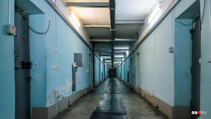 Заключенные платили за поблажки: экс-начальника колонии в Прикамье обвинили во взяточничестве