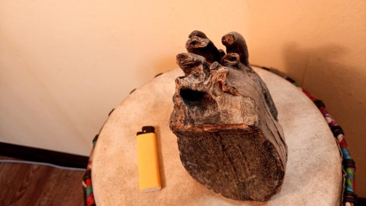 Новосибирец нашёл на нудистском пляже зуб мамонта