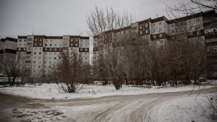 Лакомый кусок: стоимость аренды участка на окраине Новосибирска подскочила в 17 раз