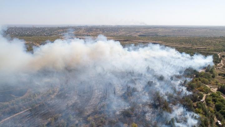 Остаются на месте: спасатели несут дежурство около выгоревшего в Волгограде соснового бора