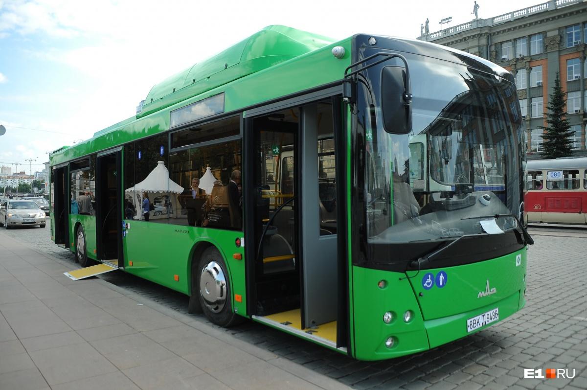 Любой из автобусов МОАП можно взять в аренду