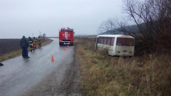 В Прикамье автобус со школьниками съехал в кювет на скользкой дороге: пострадал один ребенок