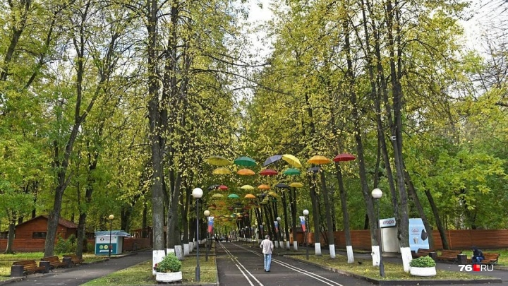 На проект обновления Юбилейного парка потратят полмиллиона рублей: что в нём изменится
