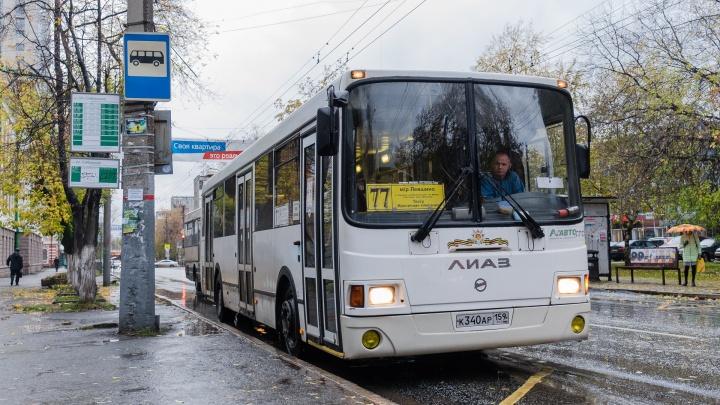 В Перми автобусный маршрут № 77 продлили до ж.-д. станции «Левшино»