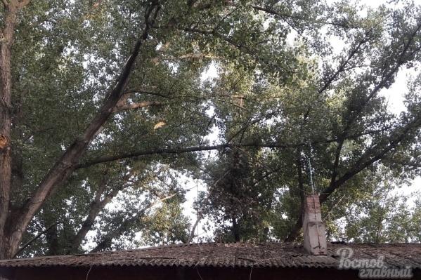 Крыша дома — давняя головная боль жителей