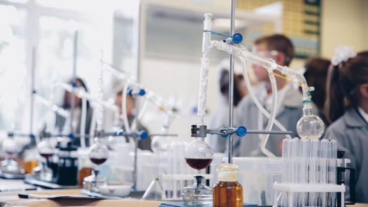 Впервые в Ярославле пройдет научная программа для детей «Великие научные открытия»